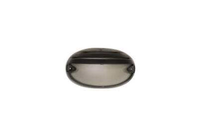 Tortuga oval con visera negra - Agua Clara