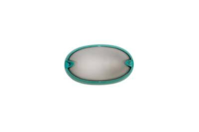 Tortuga oval lisa verde - Agua Clara