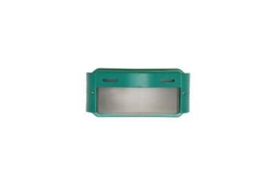 Tortuga rectangular con visera verde - Agua Clara